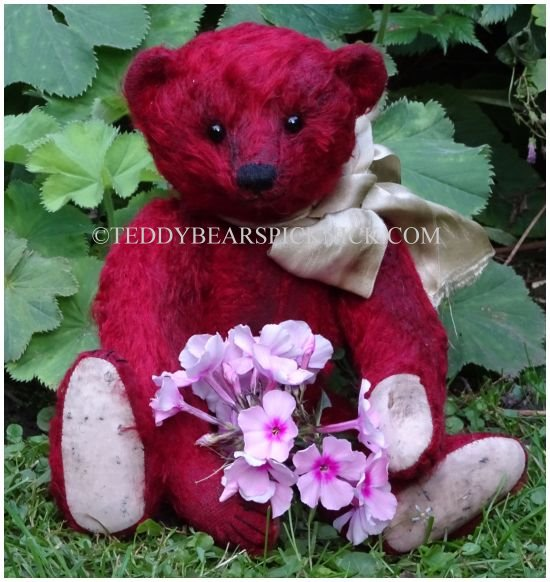 Forget me not bears Pendle