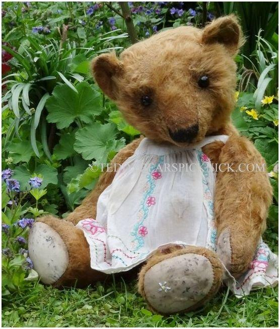 Forget me not bears Sally May